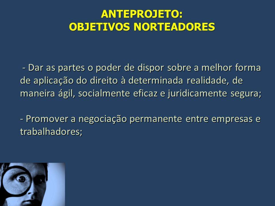 OBJETIVOS NORTEADORES