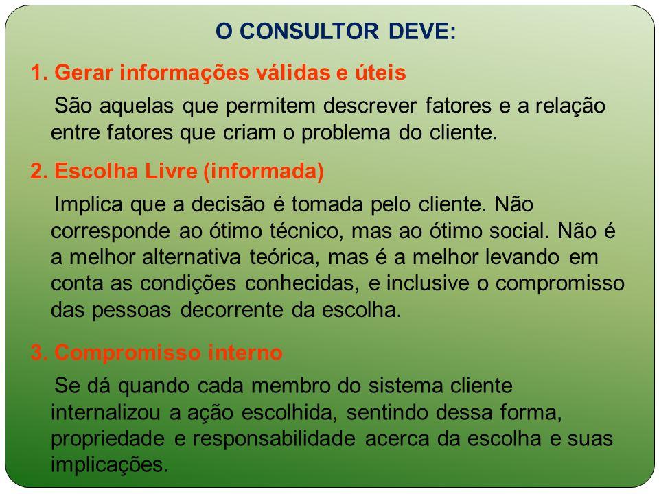 O CONSULTOR DEVE: 1. Gerar informações válidas e úteis