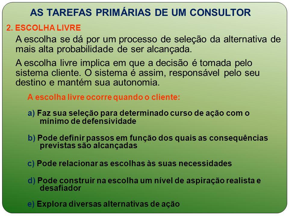 AS TAREFAS PRIMÁRIAS DE UM CONSULTOR