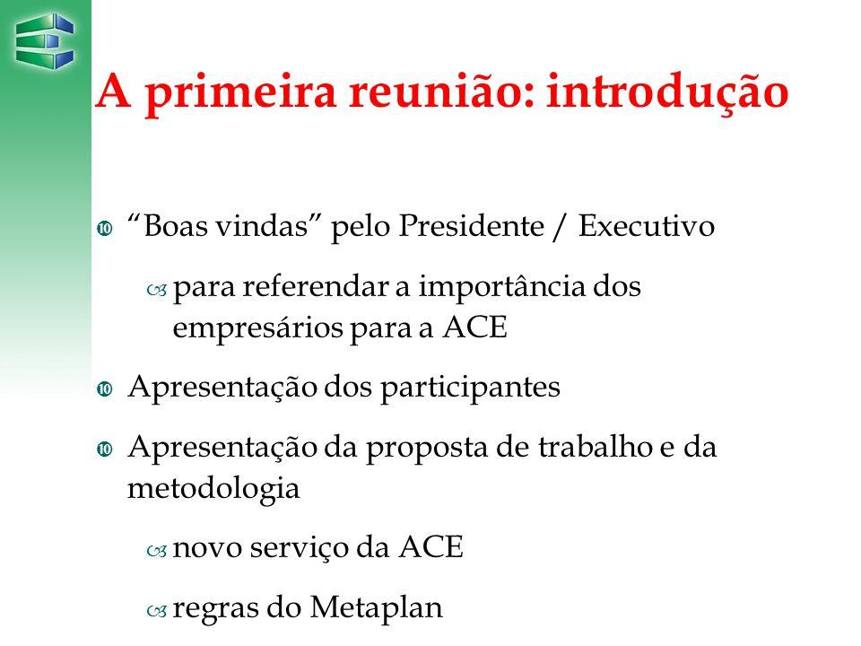 A primeira reunião: introdução