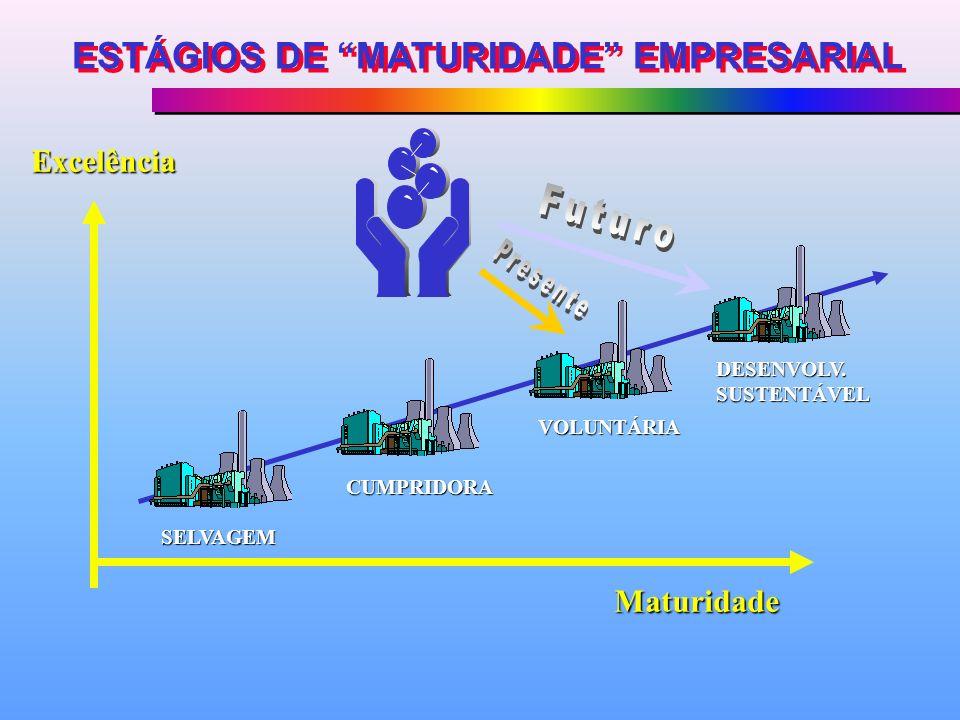 ESTÁGIOS DE MATURIDADE EMPRESARIAL