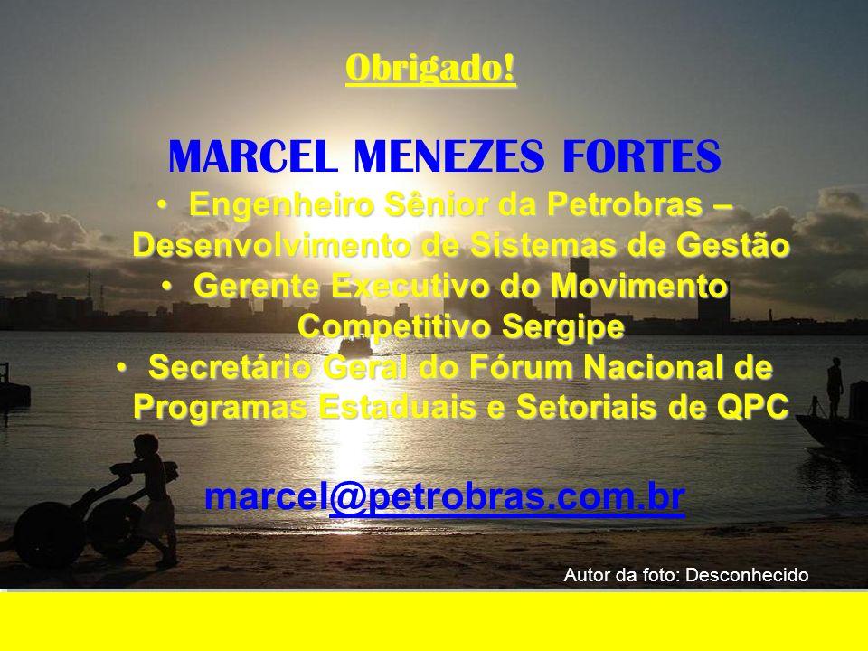 MARCEL MENEZES FORTES Obrigado! marcel@petrobras.com.br
