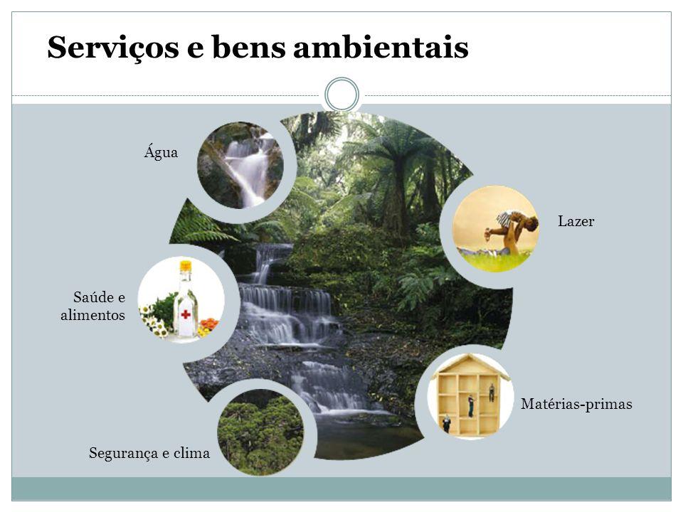 Serviços e bens ambientais