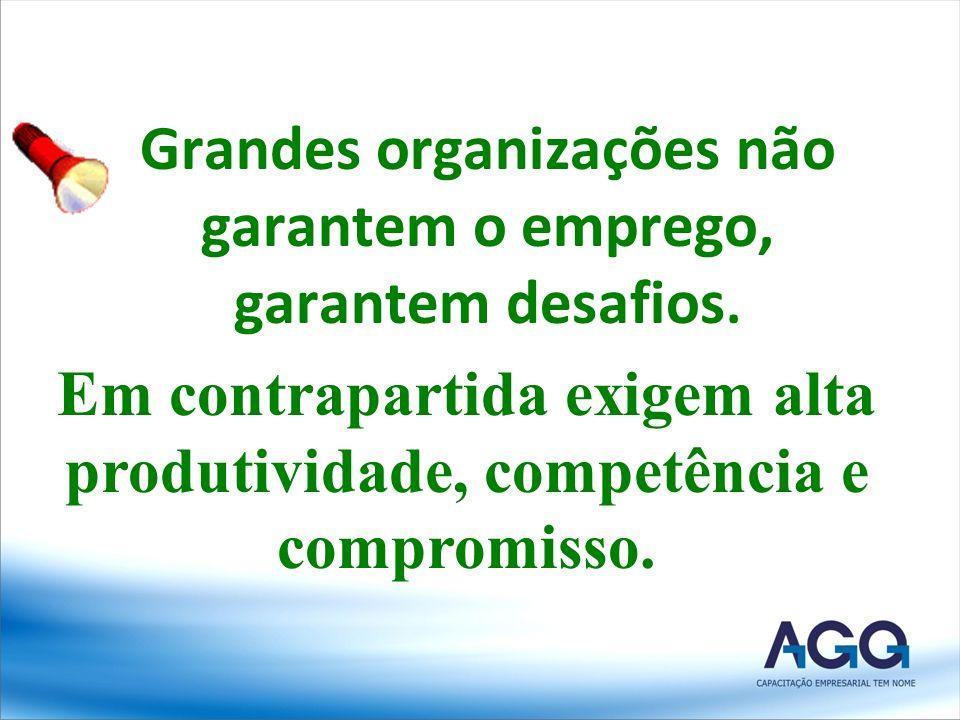 Grandes organizações não garantem o emprego, garantem desafios.