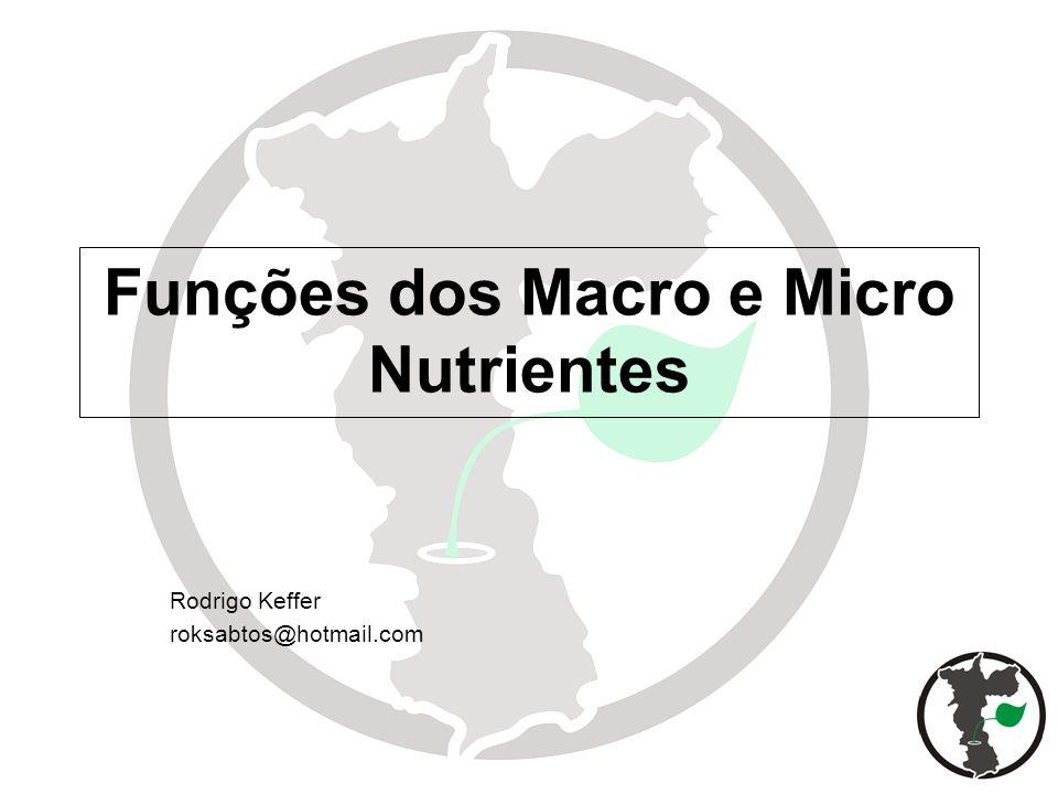 Funções dos Macro e Micro Nutrientes