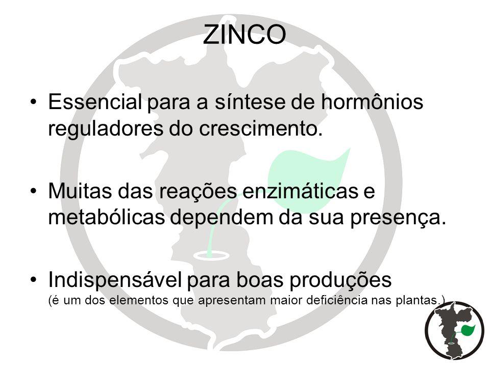 ZINCO Essencial para a síntese de hormônios reguladores do crescimento. Muitas das reações enzimáticas e metabólicas dependem da sua presença.