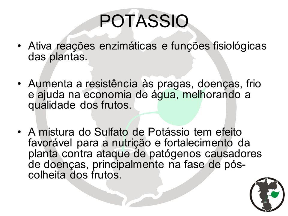 POTASSIO Ativa reações enzimáticas e funções fisiológicas das plantas.