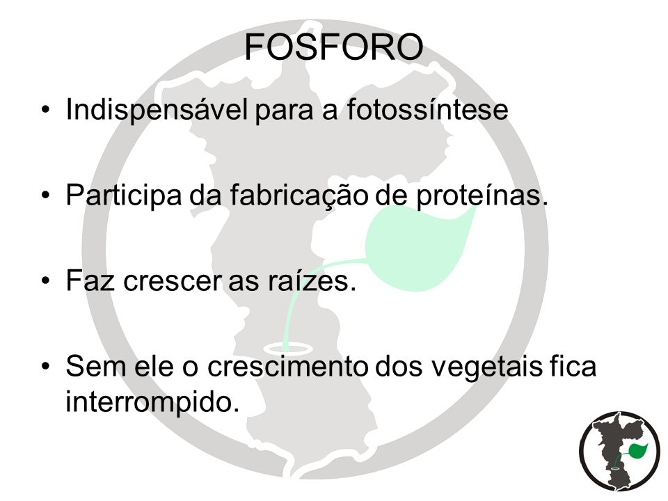 FOSFORO Indispensável para a fotossíntese