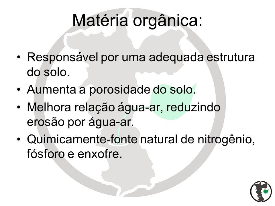 Matéria orgânica: Responsável por uma adequada estrutura do solo.