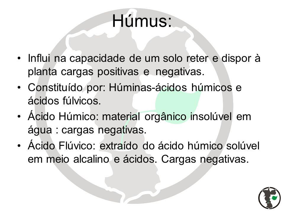 Húmus: Influi na capacidade de um solo reter e dispor à planta cargas positivas e negativas.