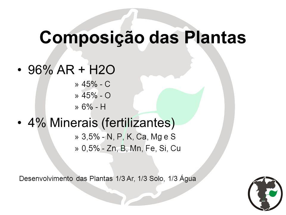 Composição das Plantas