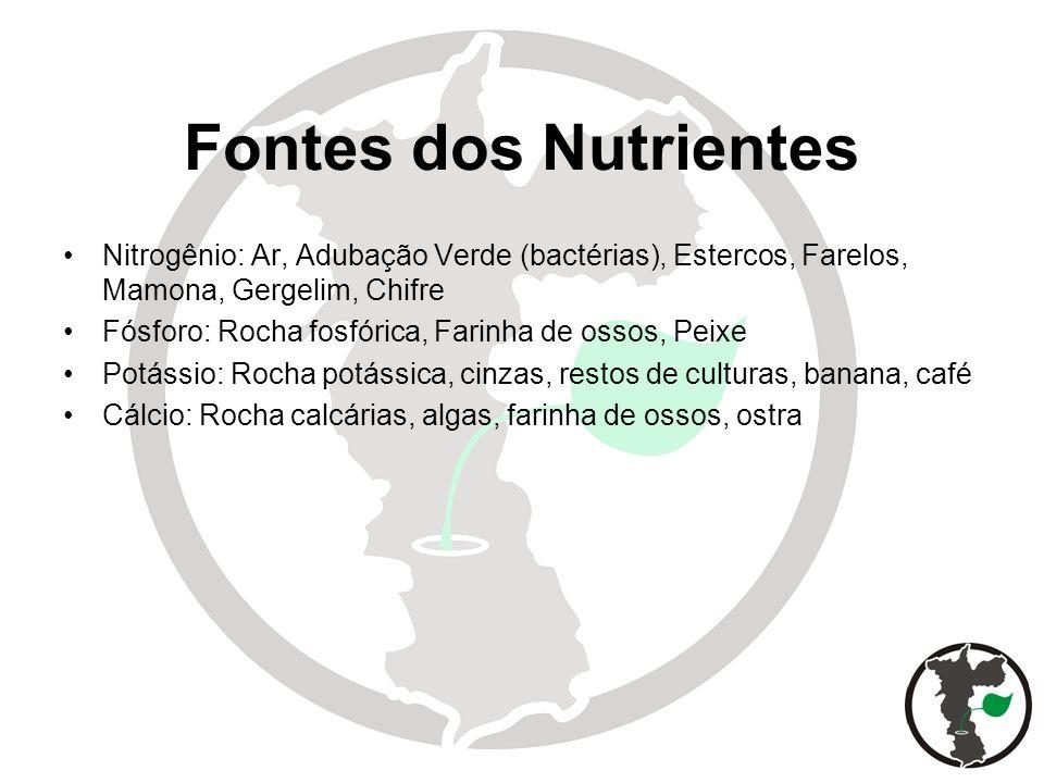Fontes dos Nutrientes Nitrogênio: Ar, Adubação Verde (bactérias), Estercos, Farelos, Mamona, Gergelim, Chifre.