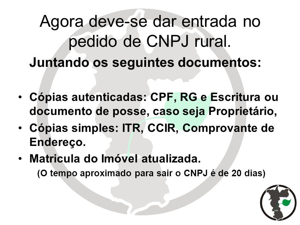Agora deve-se dar entrada no pedido de CNPJ rural.