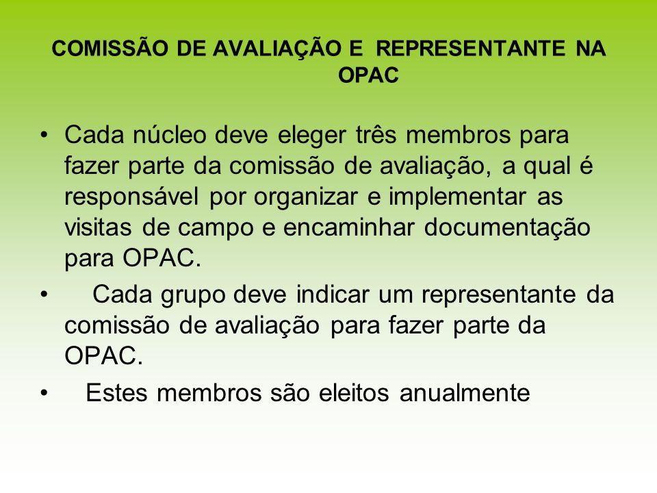 COMISSÃO DE AVALIAÇÃO E REPRESENTANTE NA OPAC