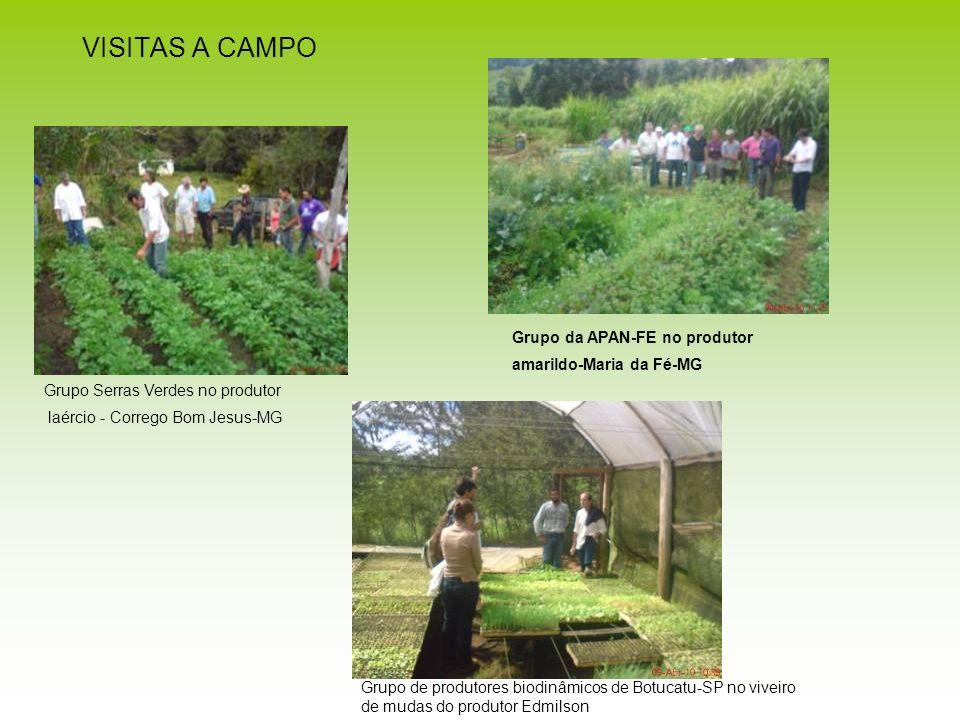 VISITAS A CAMPO Grupo da APAN-FE no produtor amarildo-Maria da Fé-MG