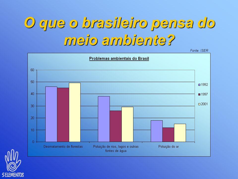 O que o brasileiro pensa do meio ambiente