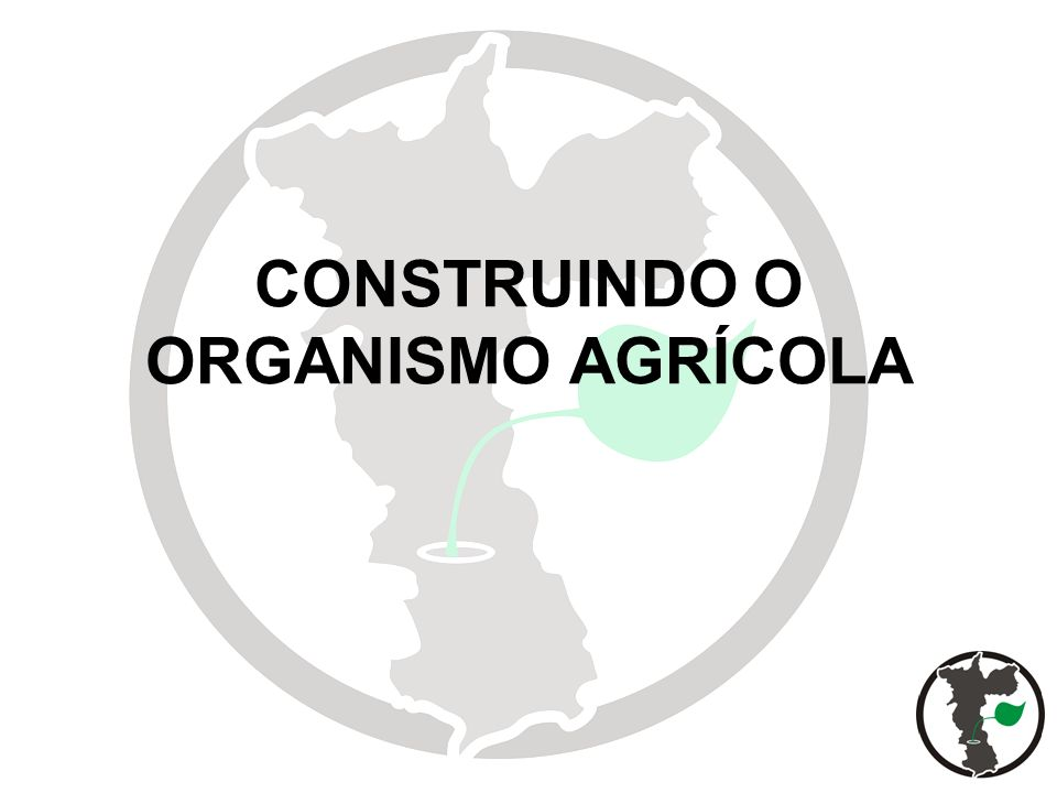 CONSTRUINDO O ORGANISMO AGRÍCOLA