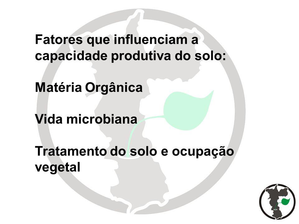 Fatores que influenciam a capacidade produtiva do solo: