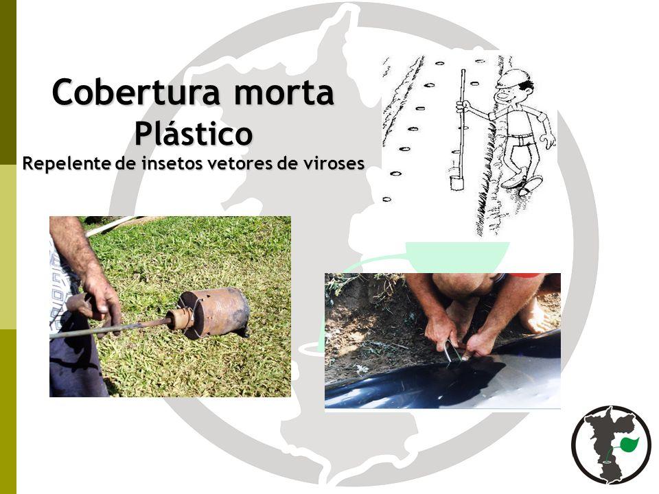 Repelente de insetos vetores de viroses
