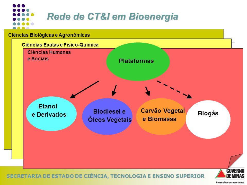 Rede de CT&I em Bioenergia