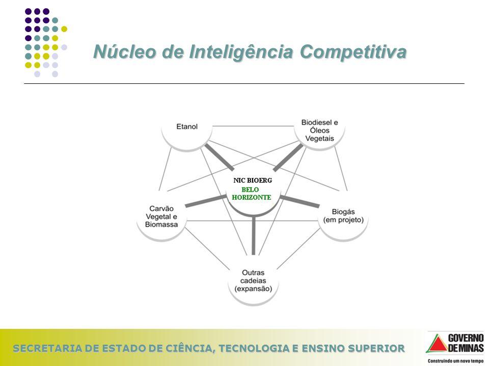 Núcleo de Inteligência Competitiva