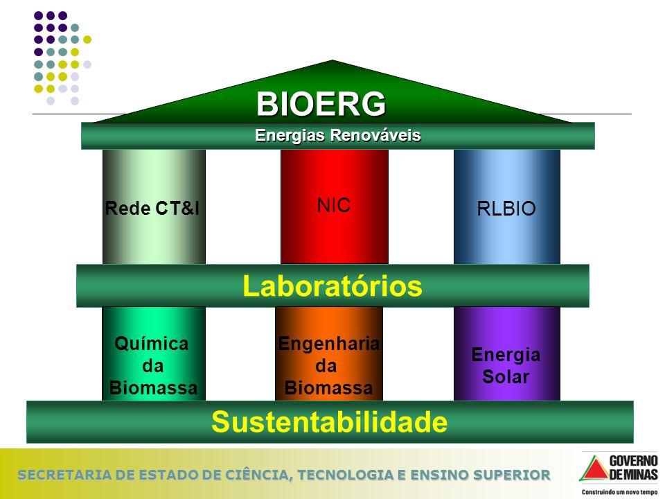 Engenharia da Biomassa