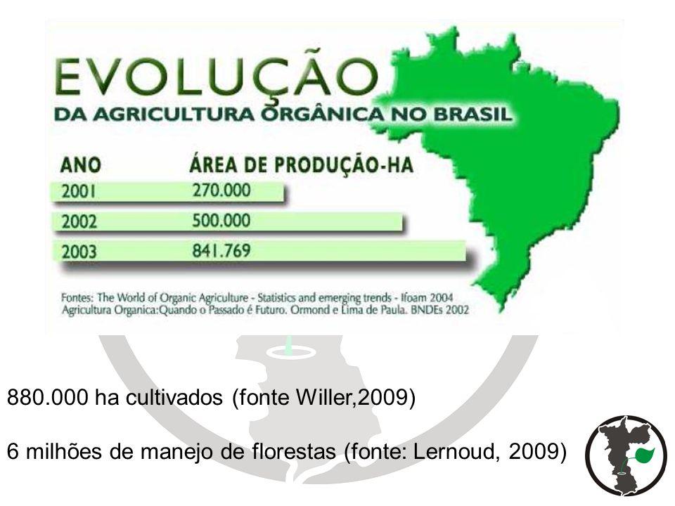 880.000 ha cultivados (fonte Willer,2009)