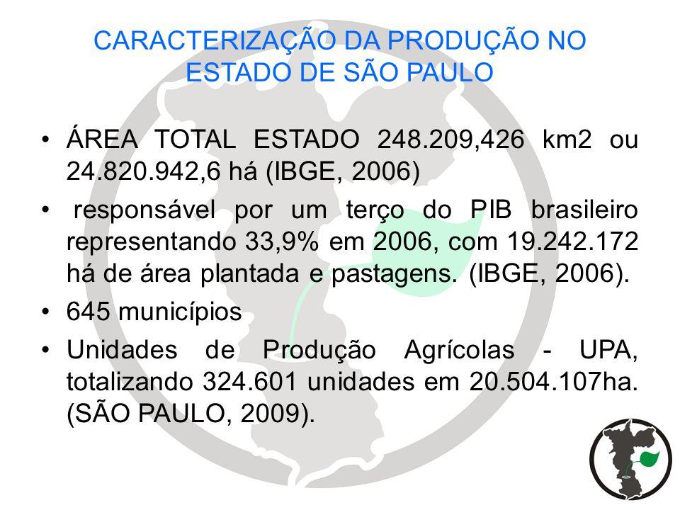 CARACTERIZAÇÃO DA PRODUÇÃO NO ESTADO DE SÃO PAULO