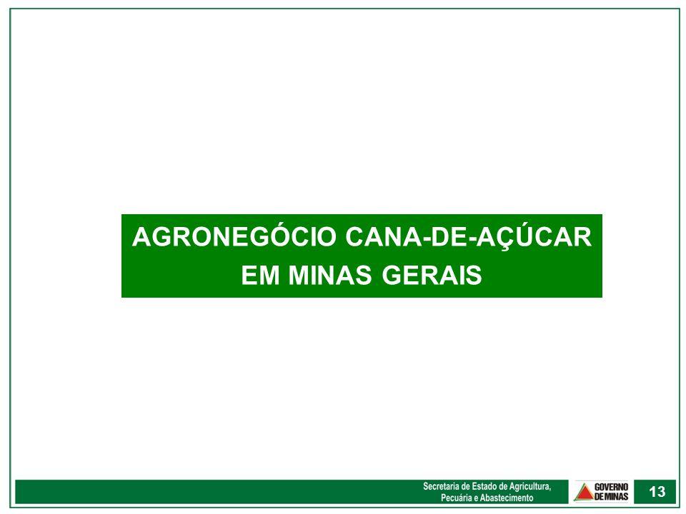 AGRONEGÓCIO CANA-DE-AÇÚCAR EM MINAS GERAIS