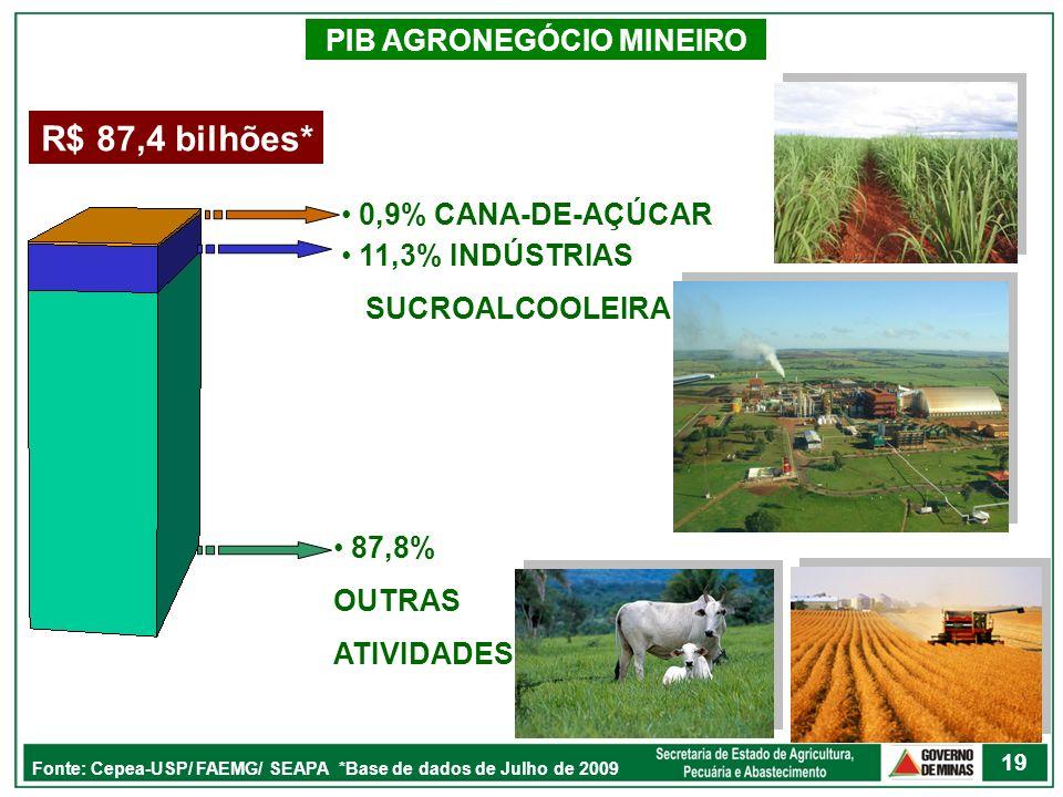 PIB AGRONEGÓCIO MINEIRO