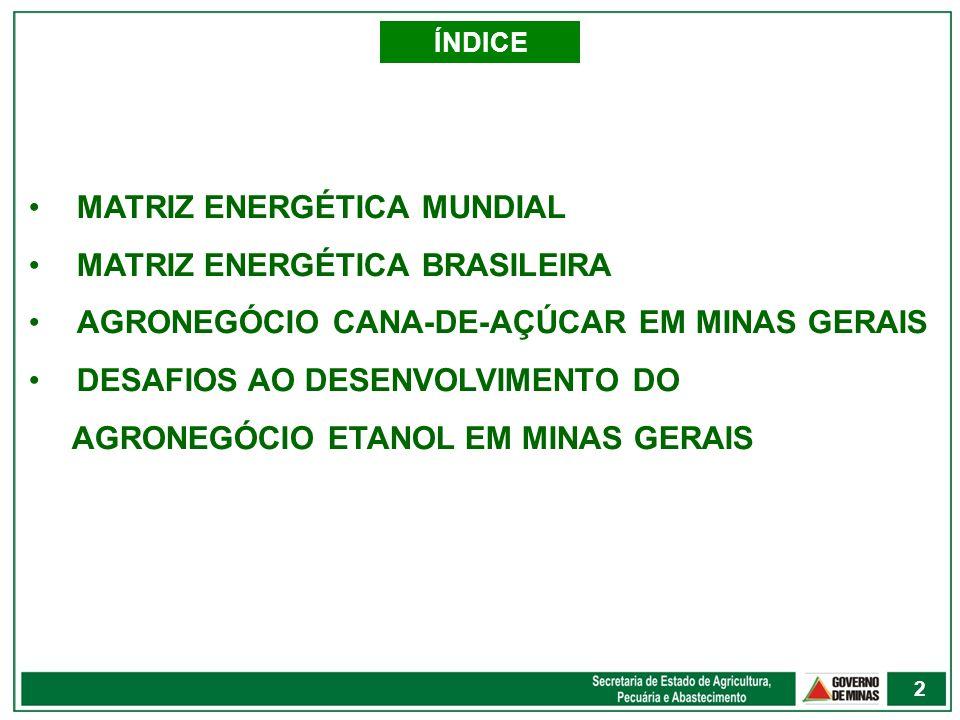 MATRIZ ENERGÉTICA MUNDIAL MATRIZ ENERGÉTICA BRASILEIRA