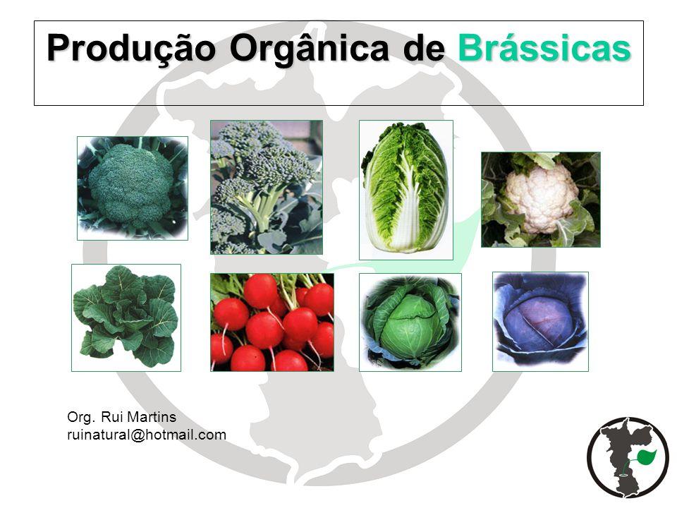 Produção Orgânica de Brássicas