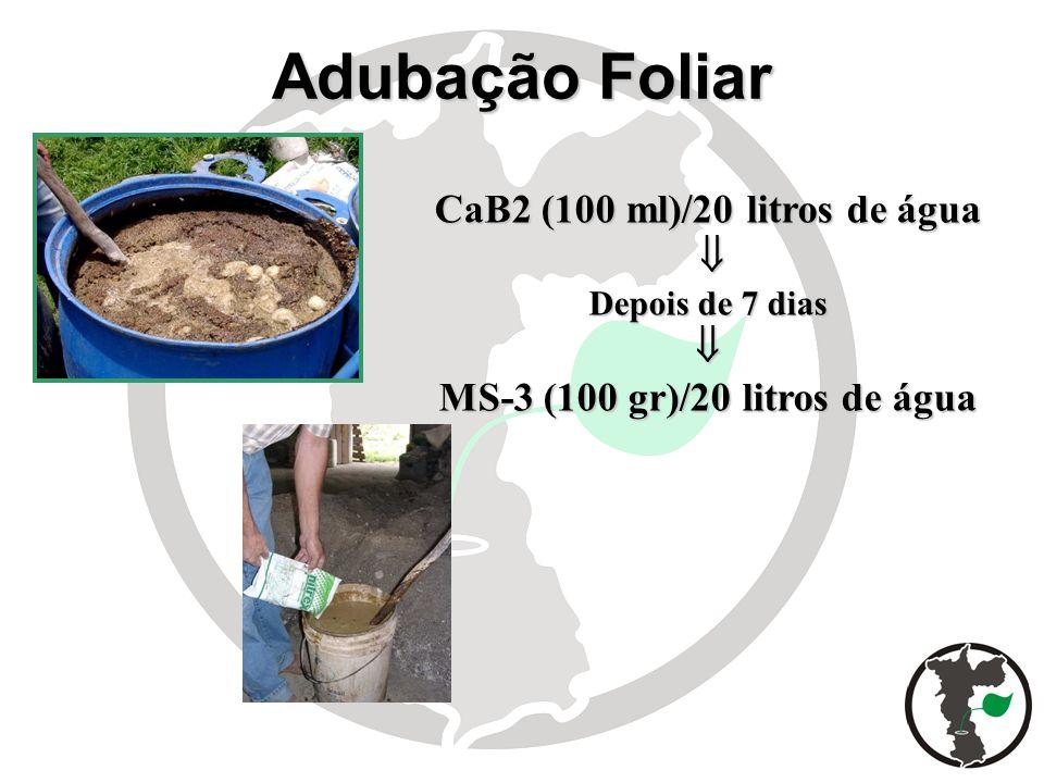 CaB2 (100 ml)/20 litros de água MS-3 (100 gr)/20 litros de água