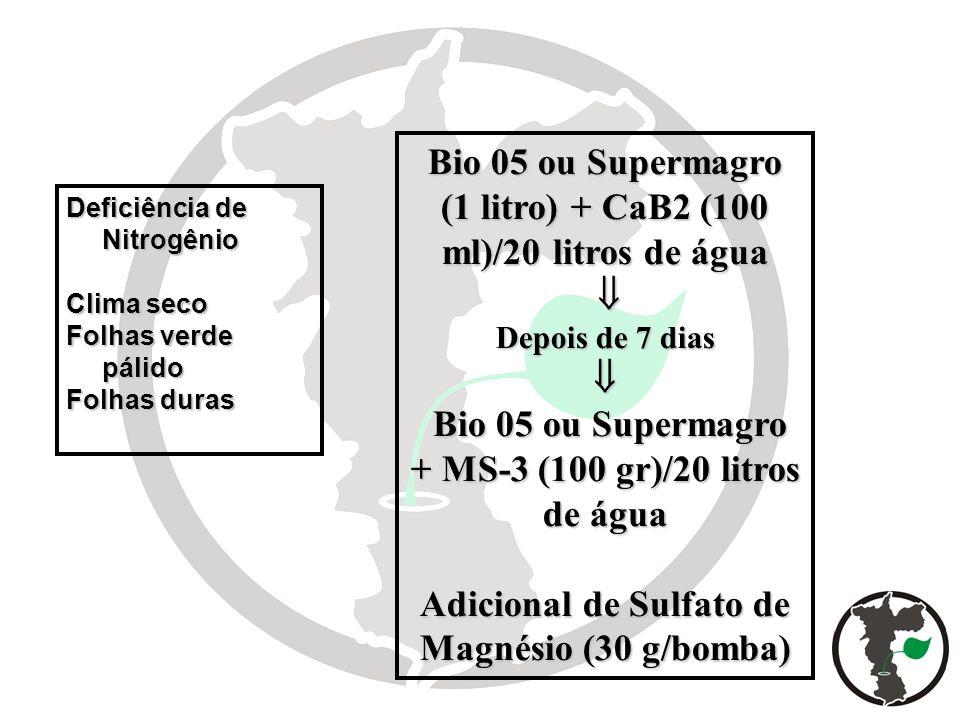 Bio 05 ou Supermagro (1 litro) + CaB2 (100 ml)/20 litros de água