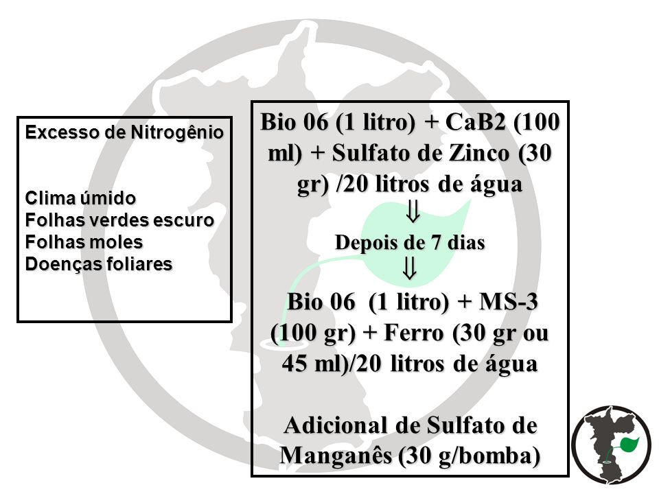 Adicional de Sulfato de Manganês (30 g/bomba)