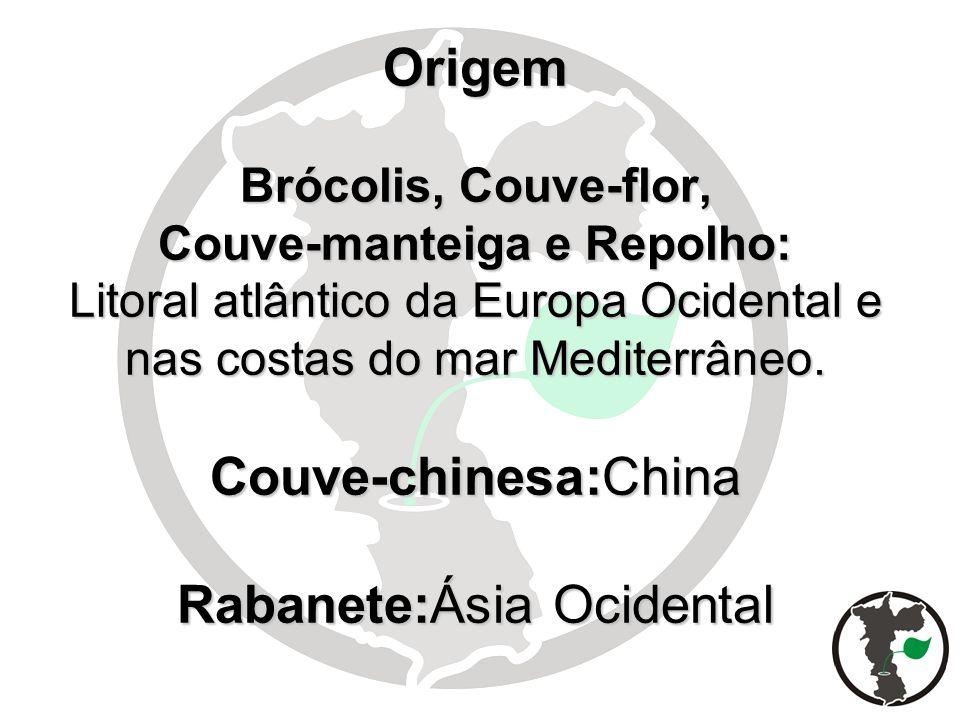 Origem Brócolis, Couve-flor, Couve-manteiga e Repolho: Litoral atlântico da Europa Ocidental e nas costas do mar Mediterrâneo.
