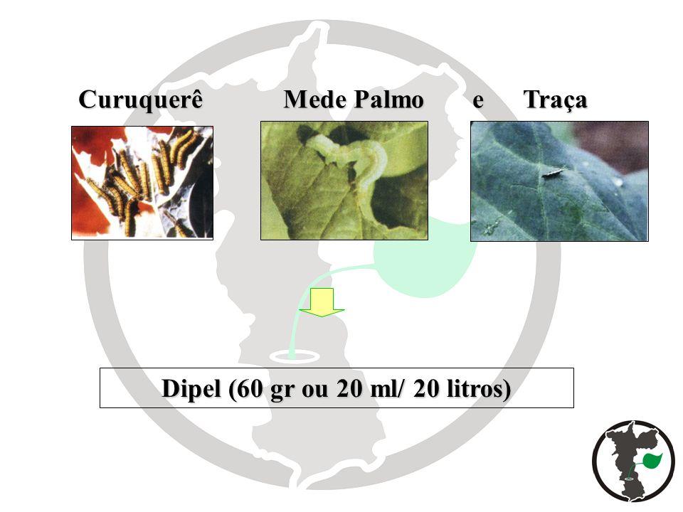 Curuquerê Mede Palmo e Traça Dipel (60 gr ou 20 ml/ 20 litros)