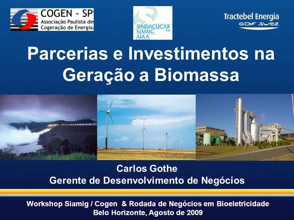Parcerias e Investimentos na Geração a Biomassa