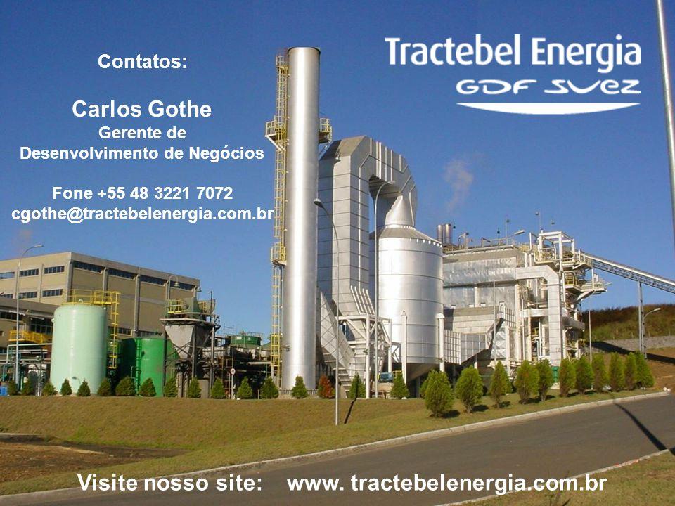Carlos Gothe Visite nosso site: www. tractebelenergia.com.br