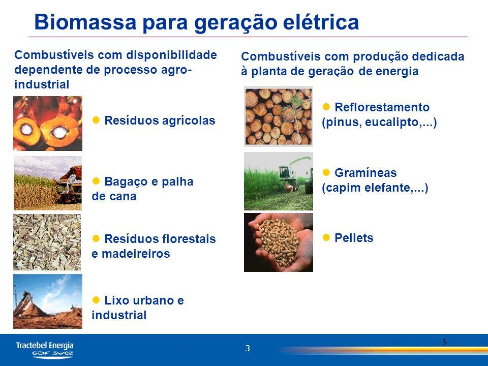 Biomassa para geração elétrica