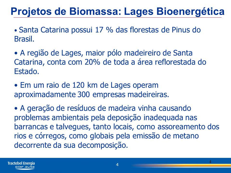 Projetos de Biomassa: Lages Bioenergética