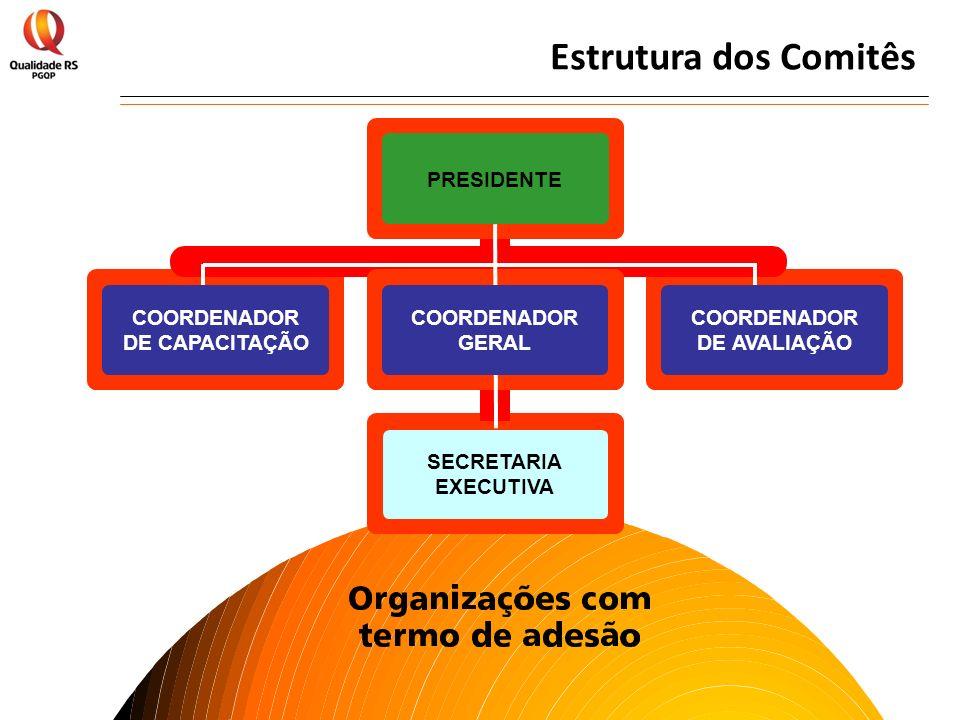 Estrutura dos Comitês SECRETARIA EXECUTIVA COORDENADOR DE CAPACITAÇÃO
