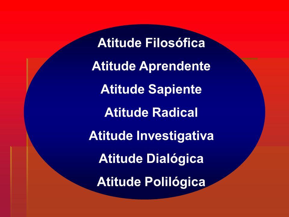 Atitude Investigativa