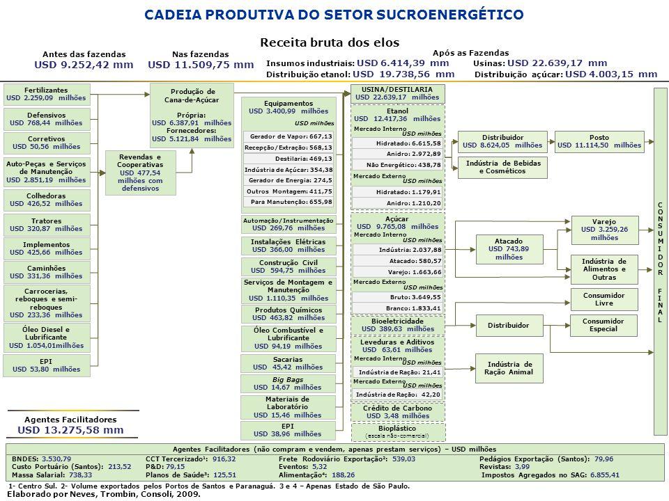 CADEIA PRODUTIVA DO SETOR SUCROENERGÉTICO