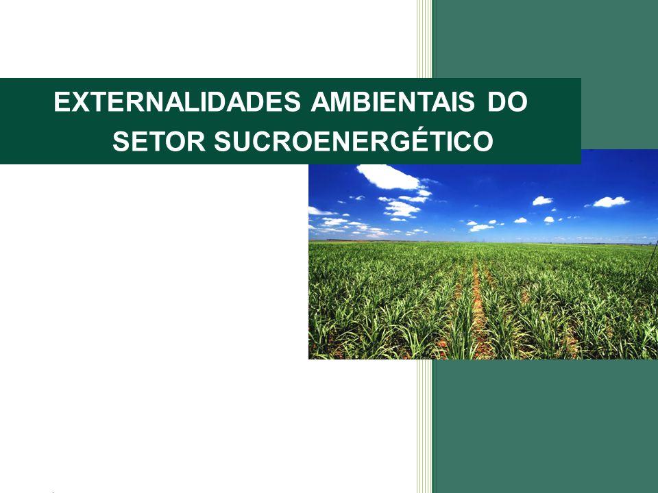 EXTERNALIDADES AMBIENTAIS DO SETOR SUCROENERGÉTICO