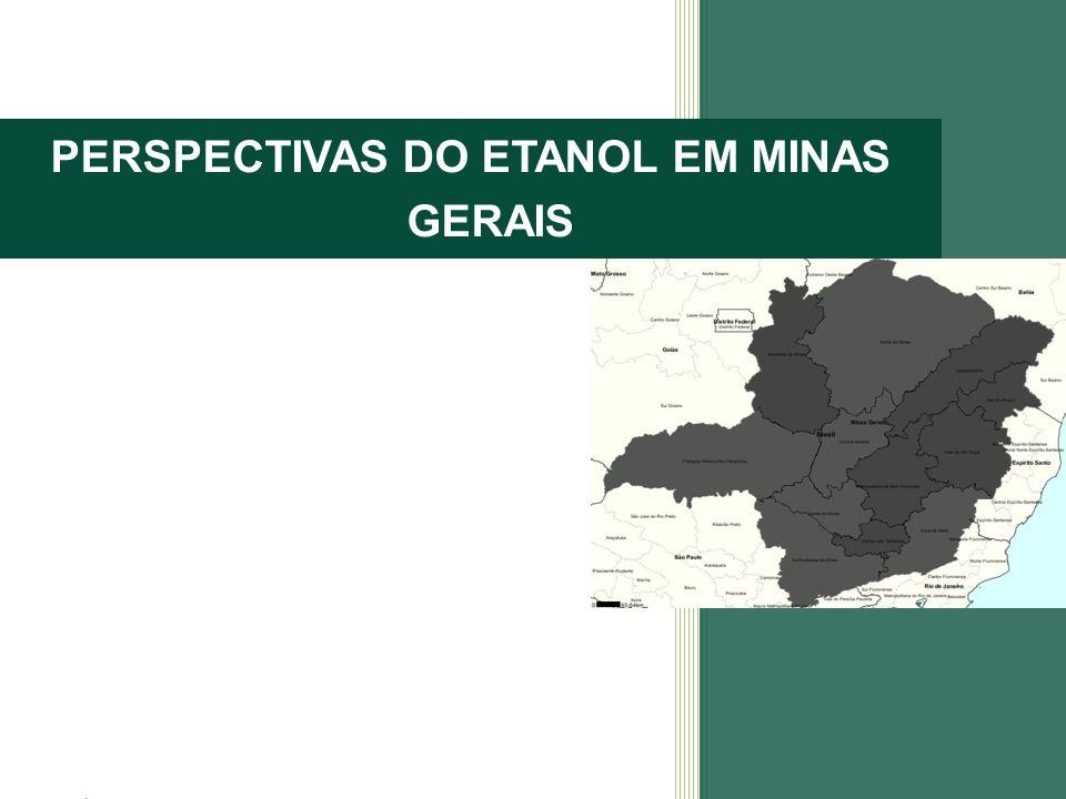 PERSPECTIVAS DO ETANOL EM MINAS GERAIS