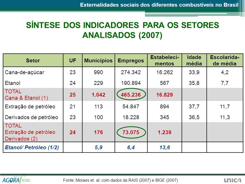 SÍNTESE DOS INDICADORES PARA OS SETORES ANALISADOS (2007)