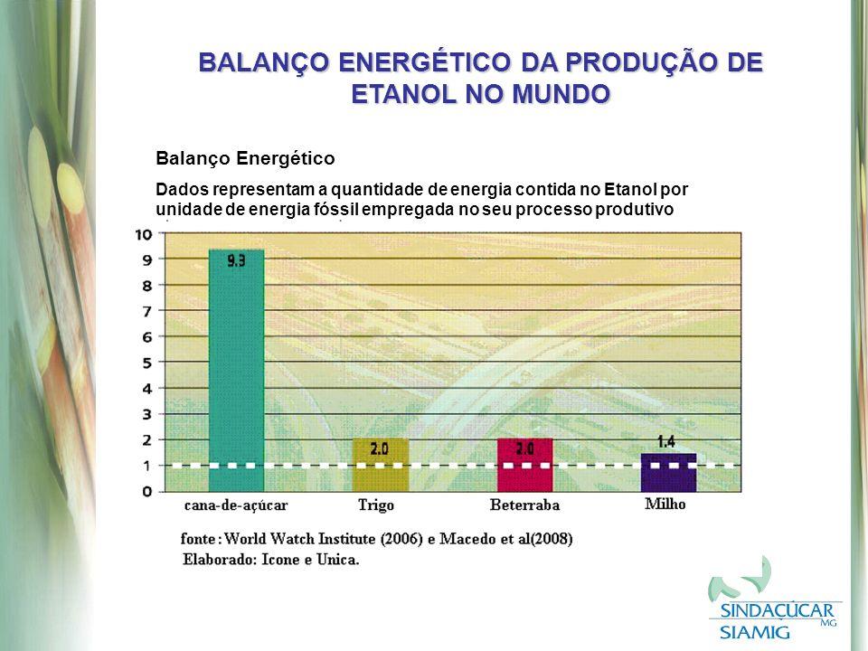 BALANÇO ENERGÉTICO DA PRODUÇÃO DE