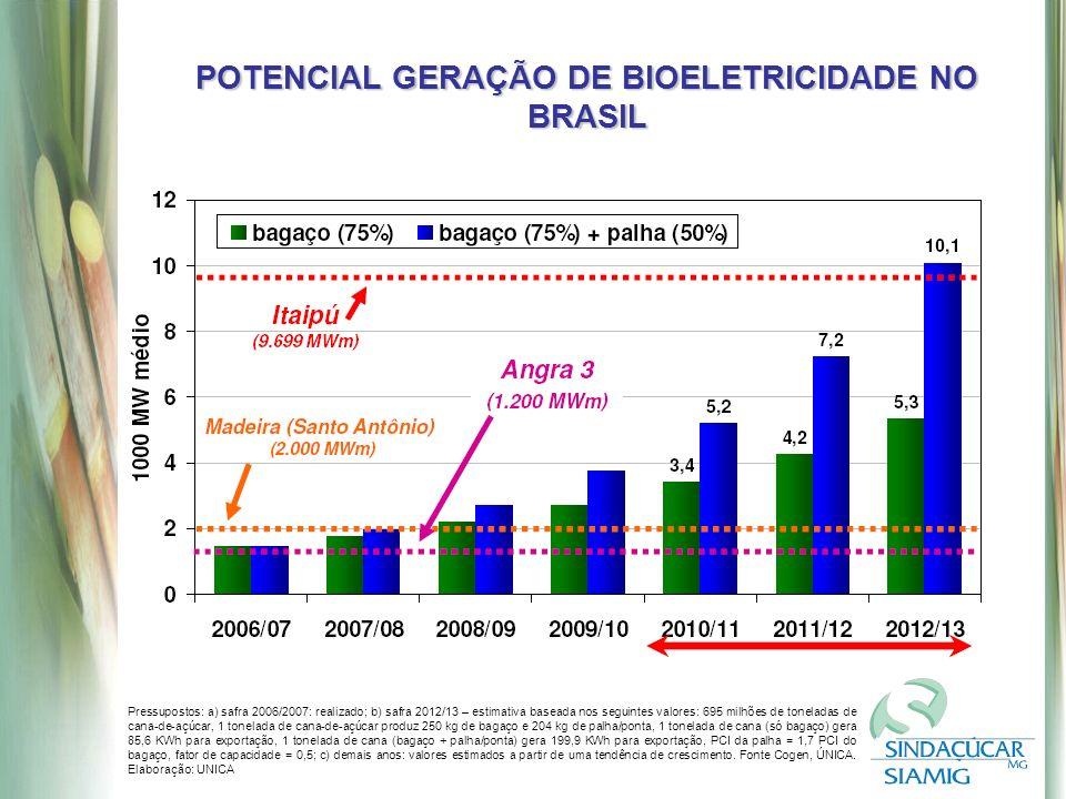 POTENCIAL GERAÇÃO DE BIOELETRICIDADE NO BRASIL