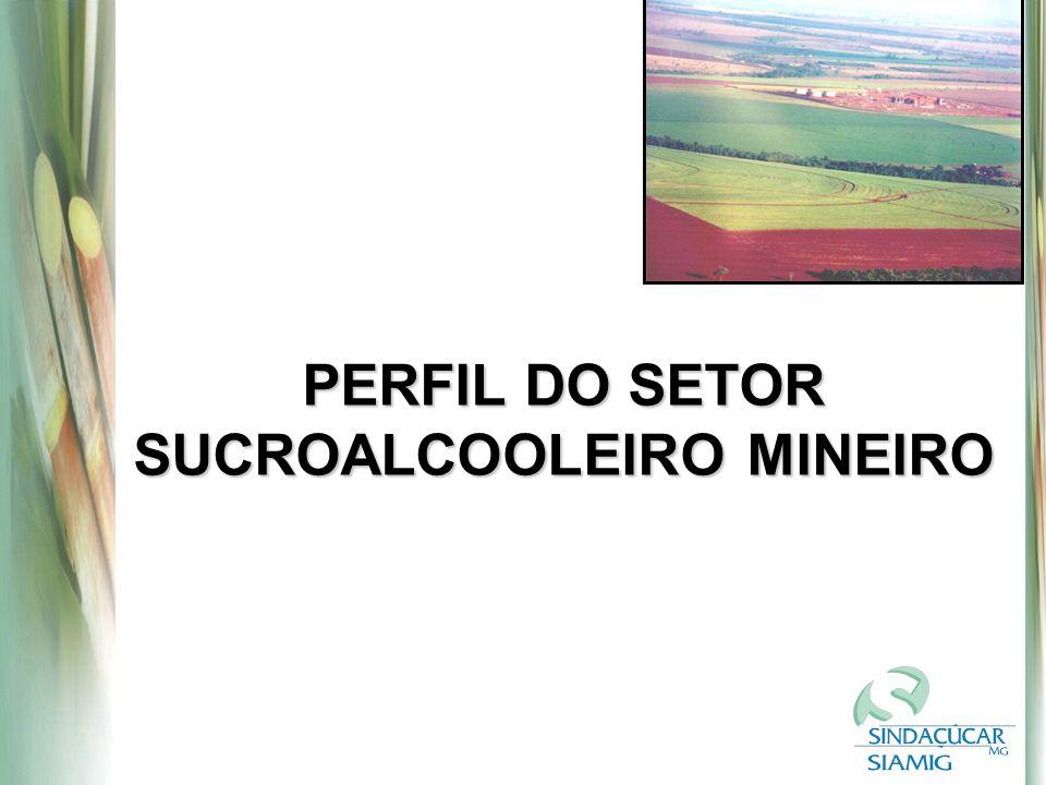 PERFIL DO SETOR SUCROALCOOLEIRO MINEIRO